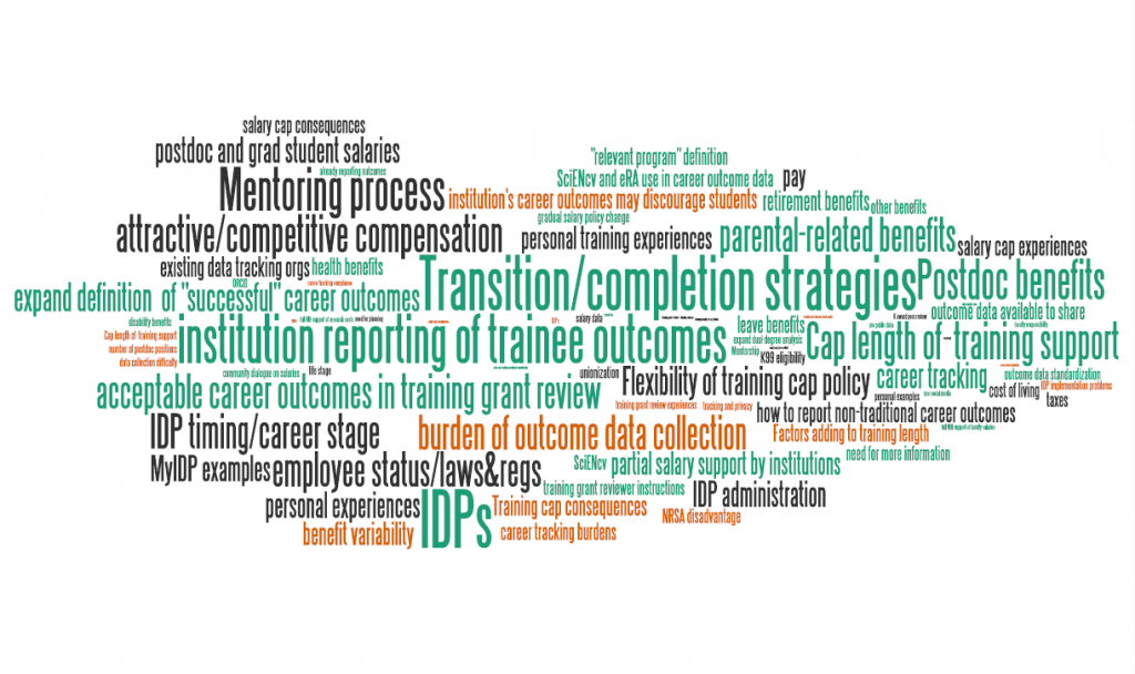 Access the data and text used to generate this graphic at http://nexus.od.nih.gov/all/wp-content/uploads/2013/08/BMW-RFI-word-cloud-data-table.xlsx , and for the full report with narrative summaries, visit the new biomedical research workforce website, biomedicalresearchworkforce.nih.gov