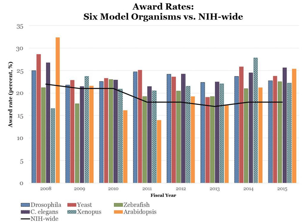 Award Rates: Six Model Organisms vs. NIH-wide. Data tables available at: https://report.nih.gov/special_reports_and_current_issues/index.aspx