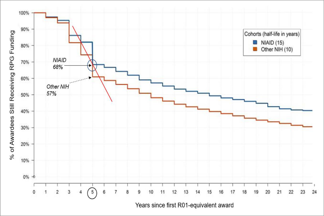 Figure 1 shows a Kaplan–Meier analysis describing the length of time awardees remain in the NIH applicant pool after their first R01 or equivalent Award. The X axis represents the number of years since receiving their first R01 or equivalent award, while the Y axis is the percentage of investigators in each cohort who later received an additional research project grant award. The blue, orange, and red lines represent NIAID awardees, other NIH awardees, and the dropout slope between 4 and 5 years, respectively.