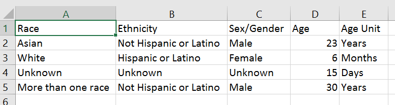 Screenshot of table of race, ethnicity, sex/gender, age, and age unit in Excel